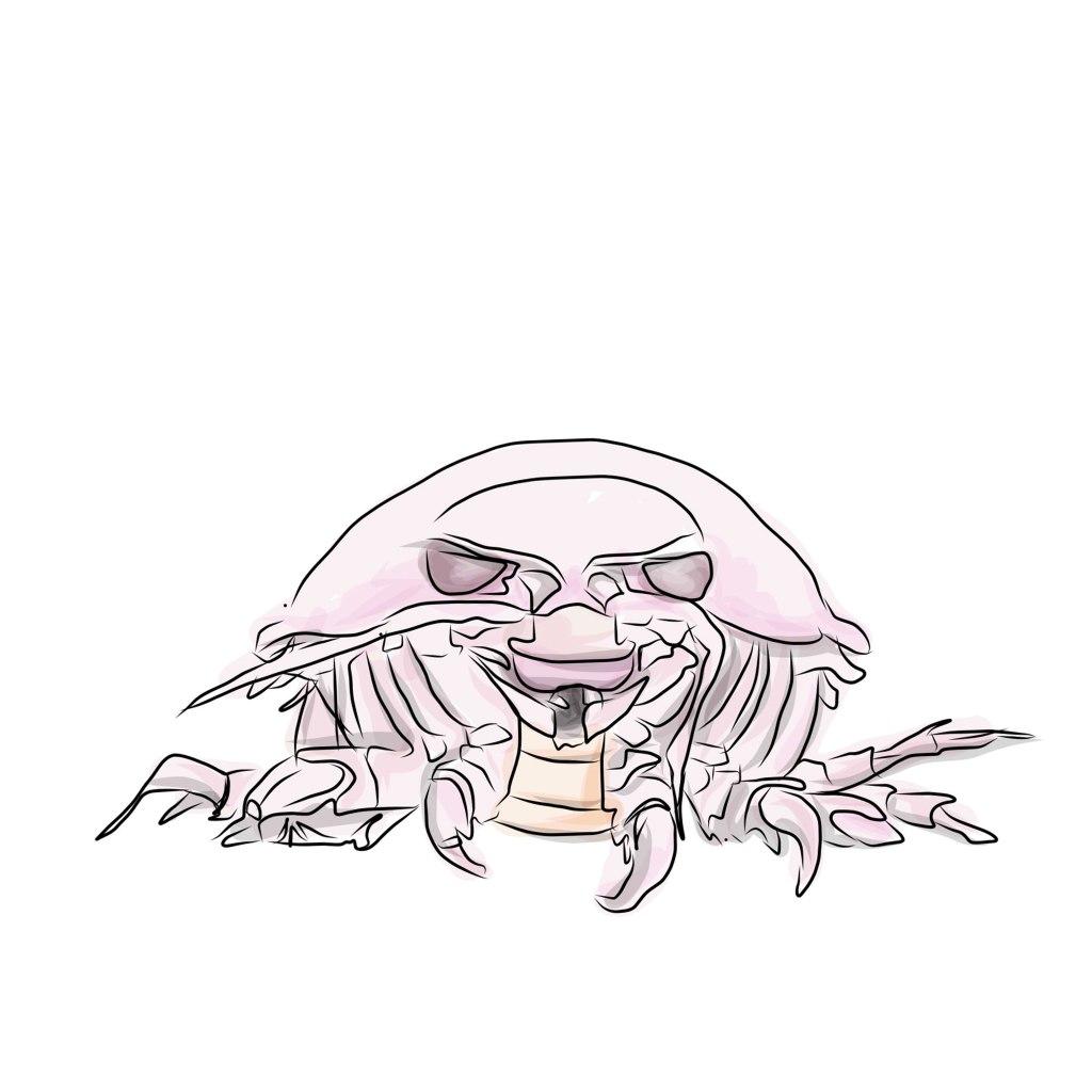 Crab-bug-thing