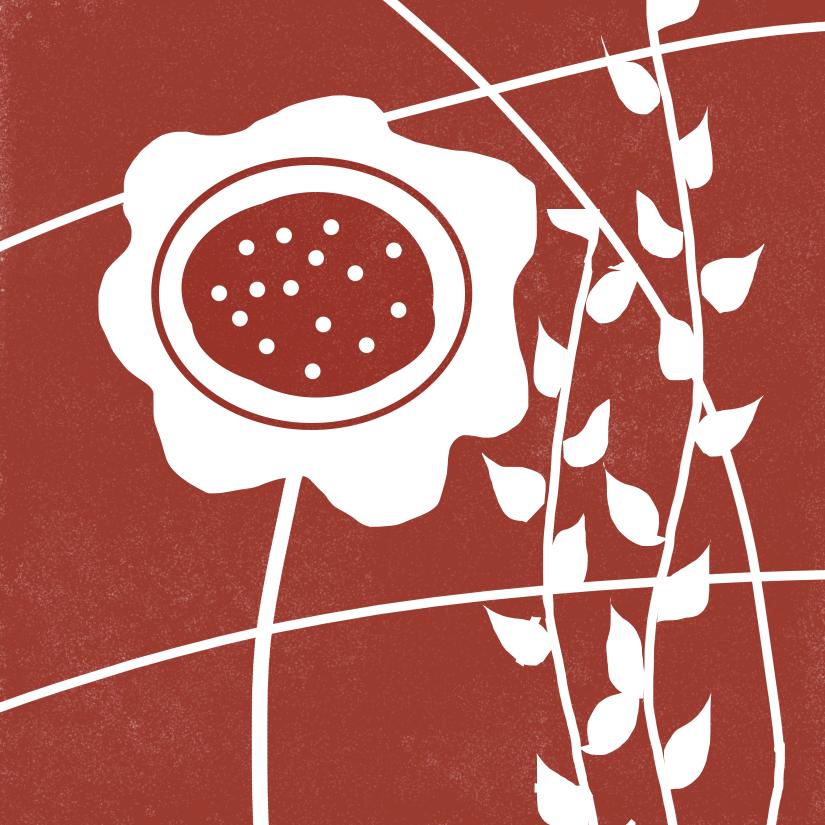 red-flower-print